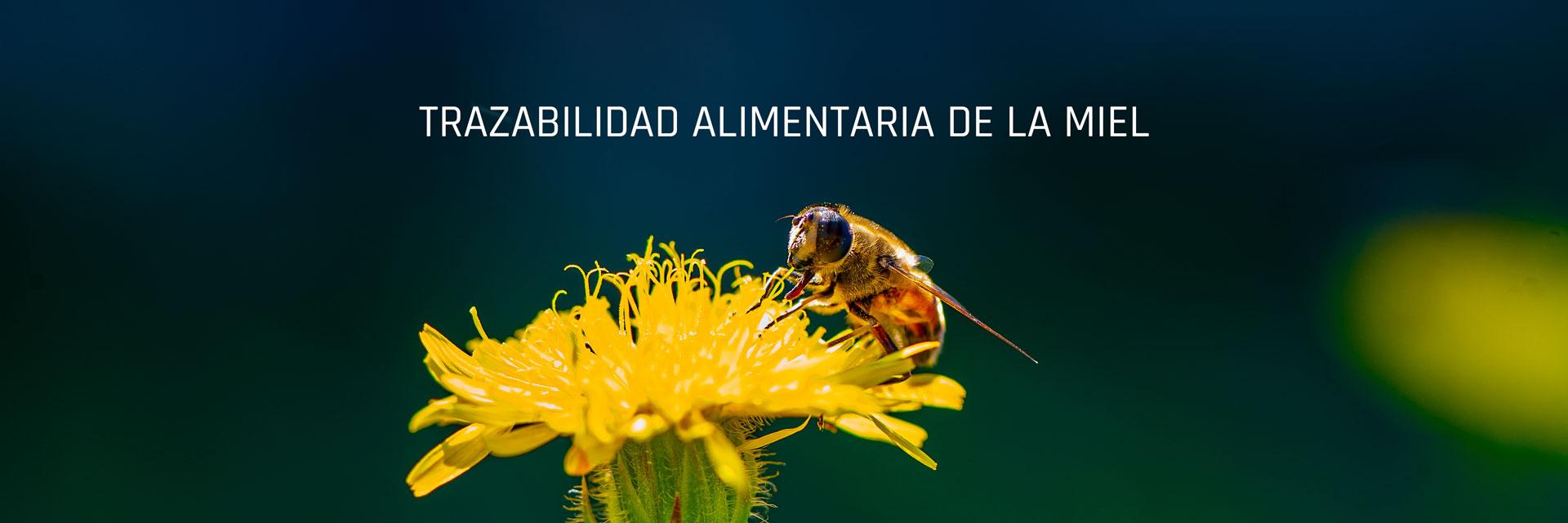 trazabilidad-alimentaria-miel-baner
